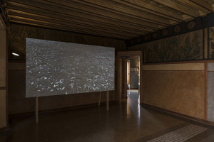 Composicions 2018: Glenda León, representada per Galeria Senda, a Casa Vicens